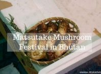 Matsutake Mushroom Festival in Bhutan