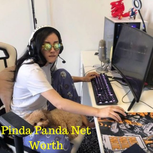 Pinda Panda Net Worth